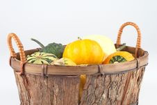 Free Mini Pumpkins In A Basket Royalty Free Stock Photos - 4102468