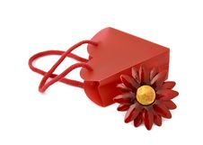 Free Red Bag Stock Photography - 4103062