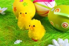 Free Pastel And Colored Easter Eggs Stock Photography - 4107662