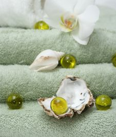 Free Exotic Bath Stock Image - 4114281