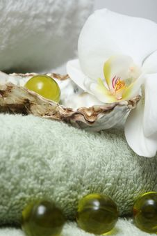 Free Exotic Spa Royalty Free Stock Photo - 4114305