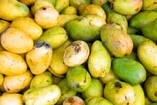 Free Green And Yellow Mangos Royalty Free Stock Images - 4116219