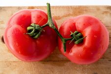 Free Tomatoes Branch Connected Stock Images - 4116434