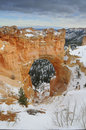 Free Bryce Canyon NP In Winter Stock Image - 4125891