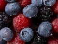 Free Summer Collection Of Berries Stock Images - 4129644
