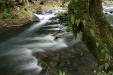 Free Creek Stock Photo - 4120900
