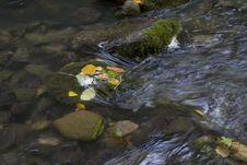 Free Creek Stock Photography - 4121162