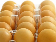 Free Eggs In The Blister Stock Image - 4121191
