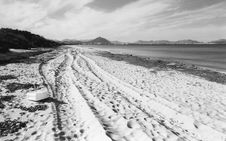 Free Beach In Early Spring Royalty Free Stock Photography - 4125257