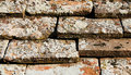 Free Roof Tiles In A Row Royalty Free Stock Image - 4139756