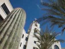 Free Hospital-With Cactus Stock Photo - 4130900