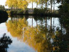 Free Autumn Leaves Stock Photos - 4131013