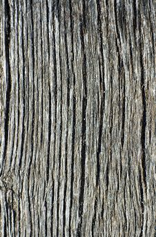 Free Close-up Of An Old Beam Royalty Free Stock Photos - 4132438