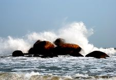 Free Great Waves Striking The Reef Royalty Free Stock Photography - 4133797