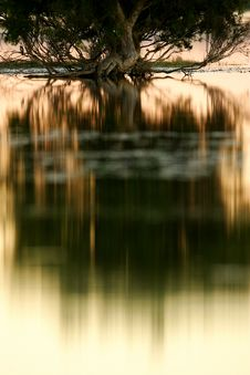 Free Lake Reflection Royalty Free Stock Photo - 4134085