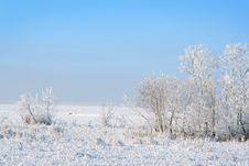 Free White Winter Stock Photo - 4134760