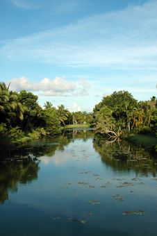 Scenic Residential Canal In Miami Stock Image