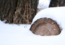 Free Log Stock Images - 4135824