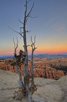 Free Dawn On Bryce Canyon Stock Photography - 4136952