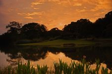 Free Lake, Tree And Sunrise In The Park Stock Photo - 4137150