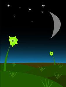 Free Night Landscape Stock Photo - 4137260