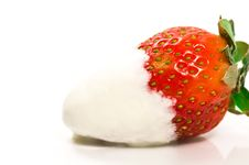 Free Strawberry And Cream Royalty Free Stock Photo - 4137995