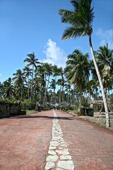 Free Tropical Scene Stock Photo - 4139000