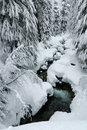 Free Creek With Heavy Snow Stock Photos - 4143003