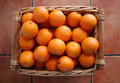 Free Oranges Royalty Free Stock Photo - 4146425