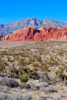 Free Picture Of The Red Rock Canyon Royalty Free Stock Images - 4141019