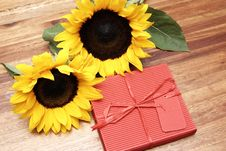 Two Sunflowers And A Red Box Royalty Free Stock Photography
