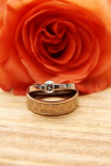 Free Rings And A Rose Stock Image - 4141141