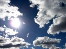 Free Tendency To Sun Royalty Free Stock Photos - 4145688