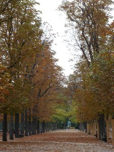 Free Autumn Colours, Luxembourg Gar Royalty Free Stock Photos - 4146058