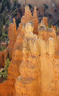 Free Dawn On Bryce Canyon Royalty Free Stock Image - 4146446