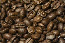 Free Coffe Stock Photography - 4146462