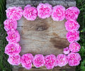 Free Roses Frame Stock Photos - 41455303