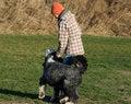 Free Dog And Girl Playing Stock Image - 4159791