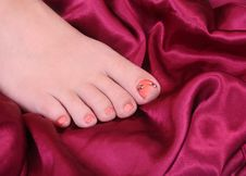 Woman S Foot Stock Photography