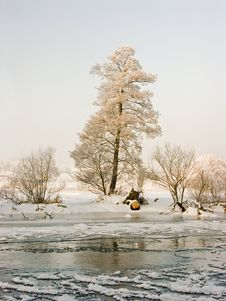 Free Frosted Tree Under River Royalty Free Stock Photography - 4152877