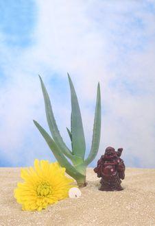 Free Aloe And Buddha Stock Photos - 4153323