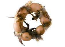 Free Easter Wreath Stock Images - 4154654