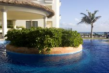 Free Pool Oasis Royalty Free Stock Image - 4157246