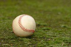 Free Baseball Stock Photo - 4159290