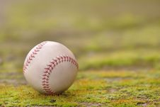 Free Baseball Stock Images - 4159344