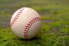 Free Baseball Stock Photo - 4159370