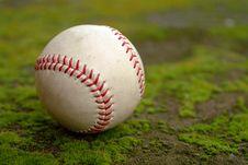 Free Baseball Royalty Free Stock Photo - 4159395