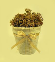 Ancient Decorative Flowerpot With A Tape Stock Photo