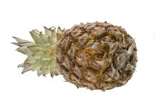 Free Ananas On White Background Stock Images - 4160694