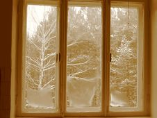 Free Looking On Winter Stock Photography - 4163562